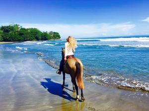 Reiten am Strand und im Dschungel