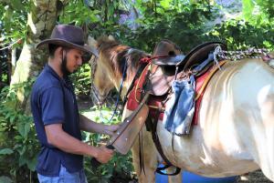 Vorbereitungen auf der Ranch