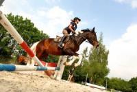 Reiterferien auf dem Reiterhof Konle, Schwäbische Alb Reitkurse, Reitabzeichenkurse, Reitabzeichen