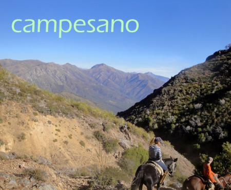 Holiday Company, B & B for Horses, Dude/Guest Ranch, Working Ranch, Ranch Resort, Ranch with Winter Snow Activities, Farm, Riding Stable, B & B for Horsemen, Western Riding Stable, Children's Holiday Company, Hotel for Horsemen in Viña del Mar - Valparaiso
