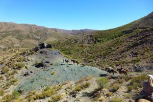 Wanderritte in die chilenischen Anden