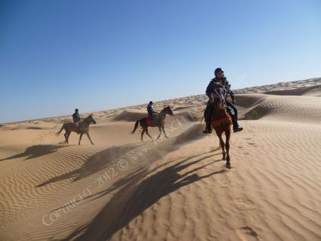 Ranch Nomade in Ksar Ghilane, Kébili-Douz / Alle Regionen