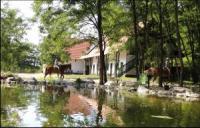 Hunnatura - Abenteuer auf dem Pferderücken im Kiskunsag National Park in der Puszta, Ungarn