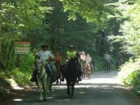 Reiturlaub im ökologischen Montenegro!