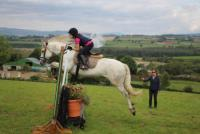 English Language Tuition - Reitferien für Kinder bei Oakwood Stables in Irland!