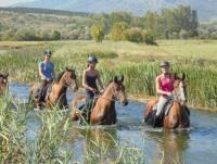 Wanderreiten in Kroatien - Dalmatia-Trail und Plitvice-Trail