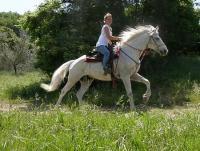 Die schönsten Reiterferien in der Toskana: Vallebona