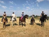 Reiterferien für Kinder und Jugendliche in Somerset, Südwesten Englands 'Annie's riding holidays'