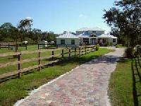 Ausritte in die ursprüngliche Florida-Natur, Reitplatz und naturbelassene Reitwege!