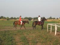 Furioso Horse Center - Reitferien in Vojvodina, Nord-Serbien!