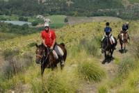 iMoresani: Reiten in Süd-Italien, in den Nationalpark von Cilento und Vallo di Diano, Wanderreiten