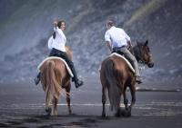 PÁTIO - Horse & Lodge. Wanderreiten auf der Azoreninsel Faial in der Mitte des Atlantiks