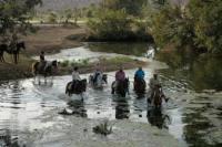 Royal Horse Safari - Komplette Reiterferien-Pauschalangebote für Indien