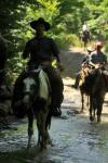 'The Horseman Ranch' - Reiturlaub in Makotsevo, Sofia - Westernreiten in Bulgarien!