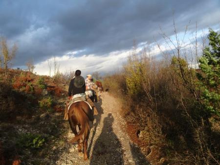 The Horseman Ranch in Makotsevo (Dorf, 35 km von Sofia) / Sofia
