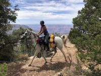 Reiten in Kalifornien - Ausritte und Ranchurlaub mit Mustangs in Los Angeles USA