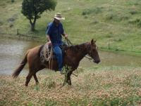 Leconfield 5 Day Jackaroo & Jillaroo School im Australischen Outback. Horsemanship in Australien