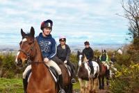 Reiturlaub und Englisch-Sprachkurs in Wexford, Irland. Fantastische Wanderritte, Strandritte
