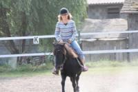 Reiterferien für Familien, Gruppen und Naturfans auf dem Ponyhof Bareis im idyllischen Oberschwaben