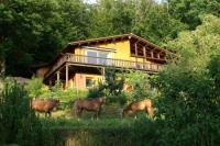 Ferienwohnung im Holzhaus am Waldrand - Wandern - Urlaub mit eigenem Pferd Eifel