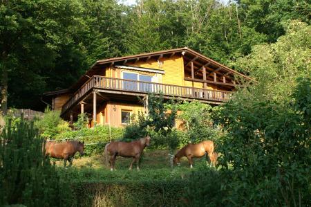Ferien-/ Urlaubsbetrieb, Wanderreitstation, Ferien-/ Gästeranch, Ranch Resort, Reiterpension, Reiterhotel in Königsfeld