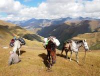 Wanderreiten in den Bergen des Kaukasus (Georgien)