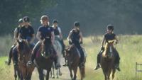 Pferdefreunde Broicher Hof: Reiterferien für Kinder und Jugendliche in Mönchengladbach