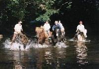 Reiterferien auf Islandpferden - Reiturlaub in Weiskirchen im Nordsaarland auf dem Hof Ruwerbach!