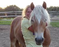 Urlaub auf dem Pferdehof Elisenberg mit Pool & Sauna für Kinder und Erwachsene nahe der Ostsee