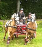 Urlaub mit Pferd und Hund in Holland auf Den Möllenhof in schönen Ferienhäusern