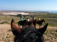 Entdecken Sie Gran Canaria zu Pferd und/oder lernen Sie entspanntes Reiten-Reiturlaub in Spanien!