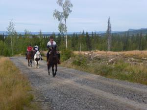 Reittour durch die Weite Lapplands