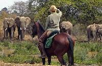 Die 'Tierärzte vom Kilimanjaro': Reiturlaub und Wildnisurlaub auf der Makoa-Farm in Tansania, Afrika