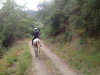 Abenteuer-Reiturlaub auf den Spuren der Schmuggler und Händler des alten Andalusien