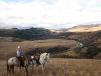 Working with Horses - Reiturlaub in ZuluWaters, einem privaten Wildreservat in Südafrika!