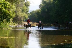 Fluss reiten bei Isa.M Reiterferien