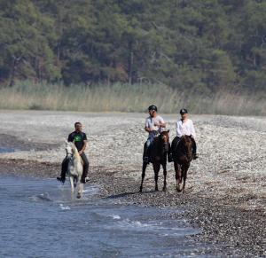 Beach riding at Isa.M Stables
