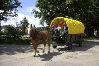 Zigeunerwagenferien für die ganze Familie - Wanderreiten in Südböhmen, Tschechien!