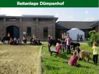Reitanlage Dümpenhof am idyllischen Niederrhein - Reitferien für Kinder und Jugendliche