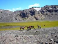 Kleiner Familienbetrieb mit persönlichem Ambiente bietet Reitabenteuer in den Bergen Chiles