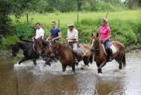 Maßgeschneiderte Reitprogramme für Anfänger und erfahrene Reiter im Herzen von Kroatien