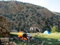 Gemütlicher Reiturlaub im Südwesten des Iran auf einer Farm - Wanderritte durch Khuzestan