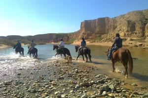 Wanderritt in Khuzestan - am Salz-Fluss