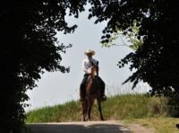 Westernreit- & Country-Wochenende im Wald- und Weinviertel in Maigen, Niederösterreich