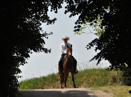 Working Horse Ranch in Maigen / Niederösterreich