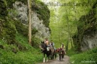 Wanderreitbetrieb Krüger: Wanderritte, Trekkingtouren und Reitkurse auf der schwäbischen Alb