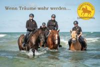 Reiterferien bei den Bernsteinreitern Hirschburg an der Ostsee in Mecklenburg-Vorpommern
