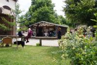 Hirtenhof Illsitz - Islandpferdehof und Reitschule im Altenburger Land in Thüringen