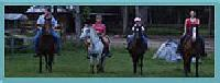 Johnson Horse Farm | Riding Lessons | Trail Riding | Boarding | Pony Parties | Charleston, SC USA