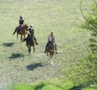 Aventura con Caballos - Abenteuer zu Pferde inmitten der weißen Dörfern Andalusiens